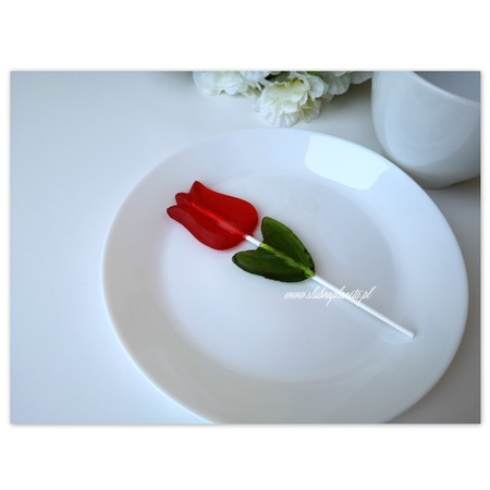 Lizak tulipan 28g (2)
